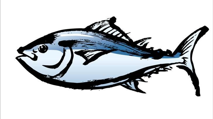 魚を書く時は頭が右